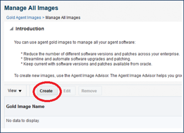 Introduction to Oracle Agent Gold Images